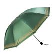 (Olive Green) Checker Trim Umbrella
