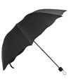 (Black) Scallop Edge Umbrella