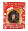 (Black Dachshund) Dog Collection Christmas Ball