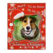 (Jack Russell) Dog Collection Christmas Ball Orn