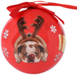 (Reindeer Dog) Animal Collection C