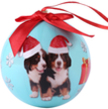 (Bernese) Animal Collection Christmas Ball Ornam