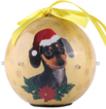 (Dachshund) Dog Collection Twinkling Lights Chri