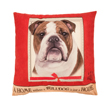 (Bulldog) Dog Collection Throw Pillow Cushion
