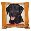 (Labrador) Dog Collection Throw Pillow Cushion